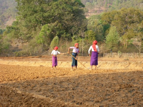 Mujeres birmanas trabajando el campo (2005). (Wikimedia Commons)